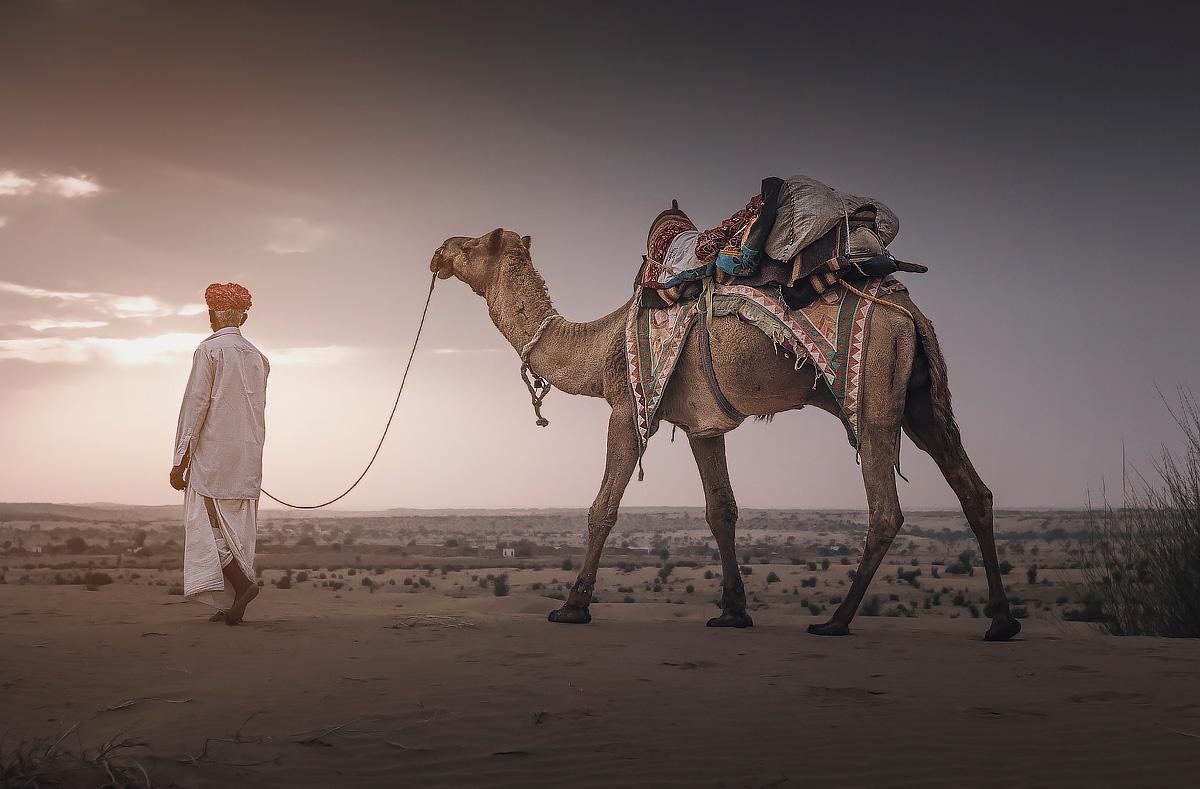 Deserto del Thar - Rajasthan